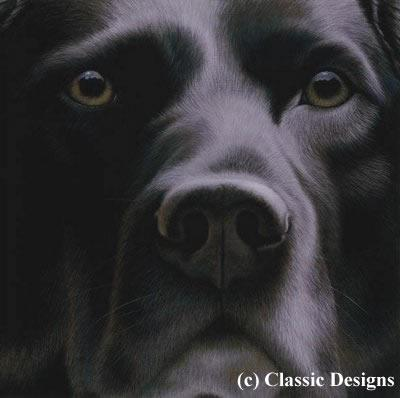 Larger Than Life - Black Labrador by Nigel Hemming