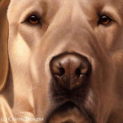 Larger Than Life - Yellow Labrador by Nigel Hemming