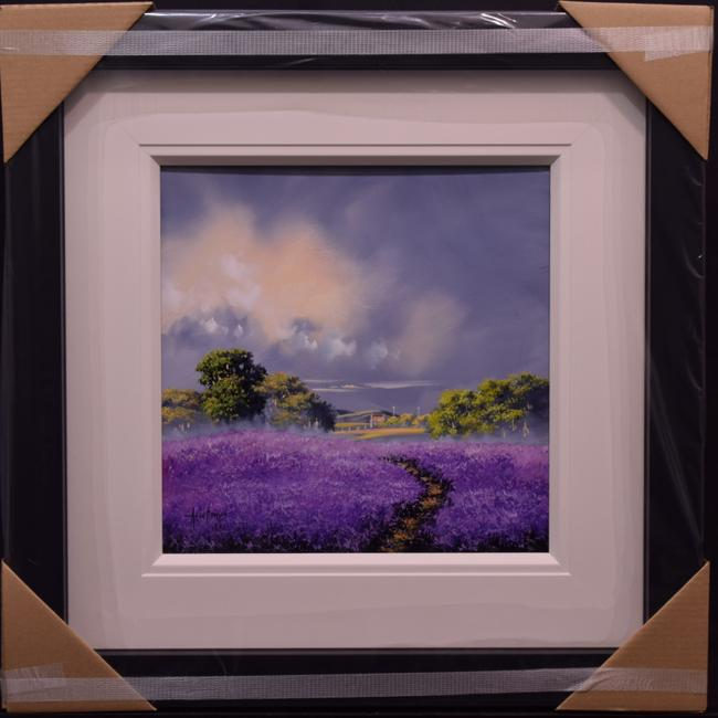 Lavender Fields by Allan Morgan