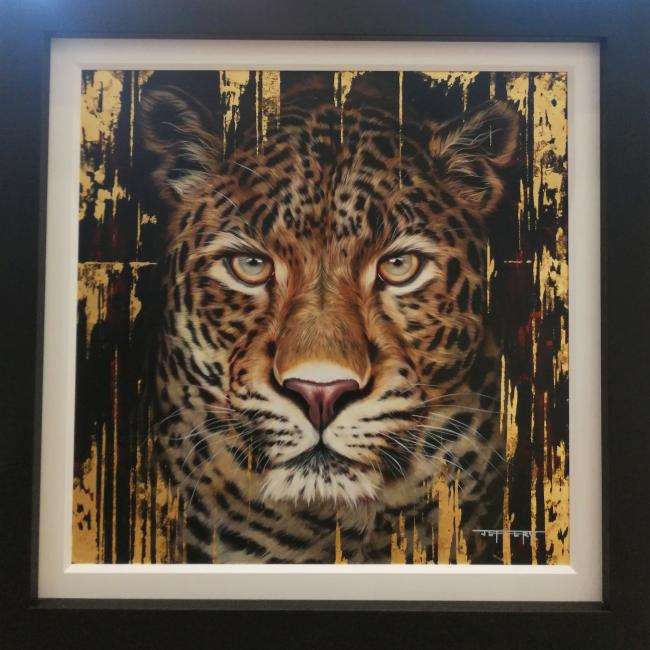Leopard by Ben Jeffery
