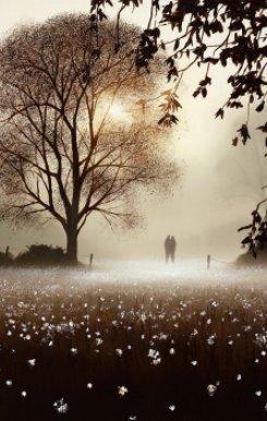 Life Is Sweet by John Waterhouse