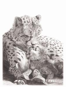 No Greater Love- Cheetah by Wendy Corbett