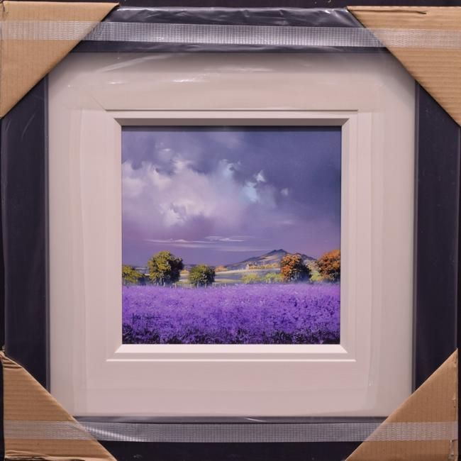 Purple Field (12x12) by Allan Morgan