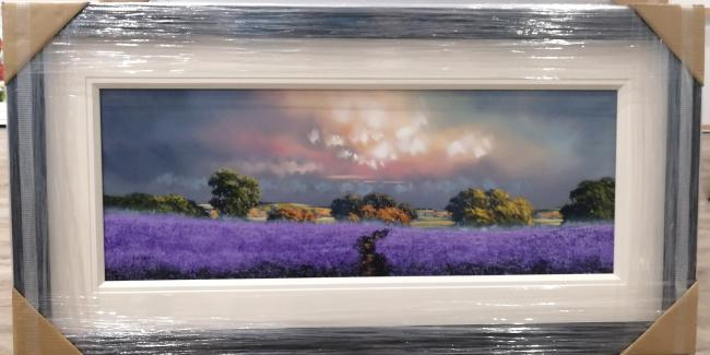 Purple Field (15x40) by Allan Morgan