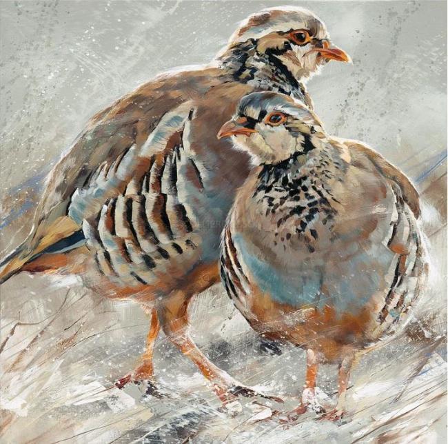 Red Legged Partridge by Debbie Boon
