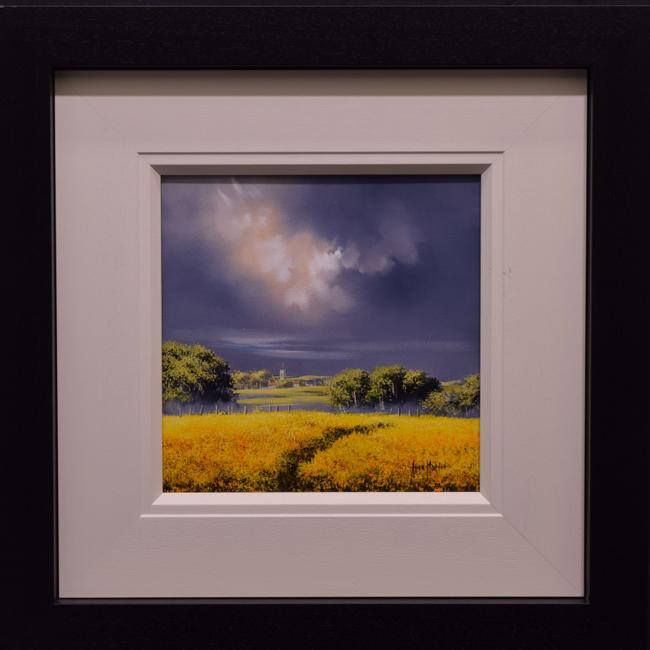 Sunshine Field ii (12x12) by Allan Morgan