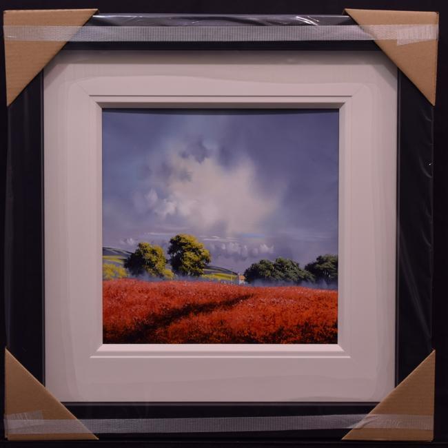 Sunshine Fields by Allan Morgan