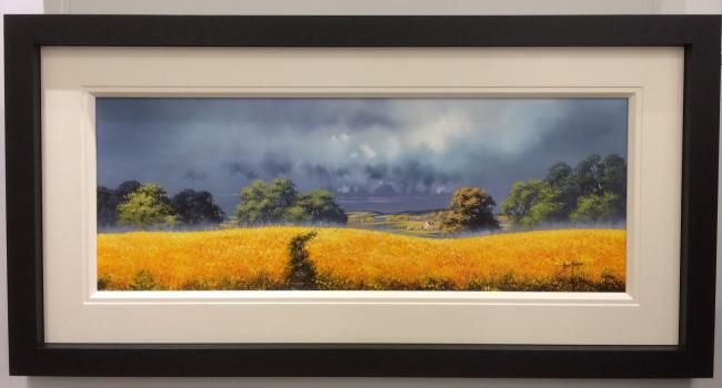Sunshine Fields (40 x 15) by Allan Morgan