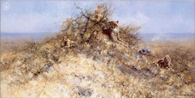 The Best Spots On The Hill by David Shepherd