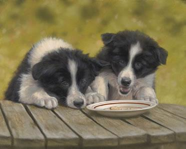 The Last Biscuit by John Silver