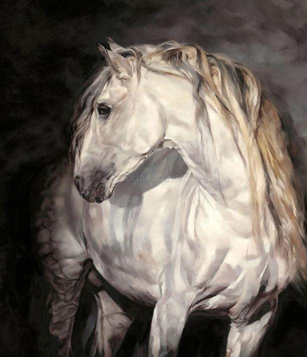 The Spaniard by Debbie Boon