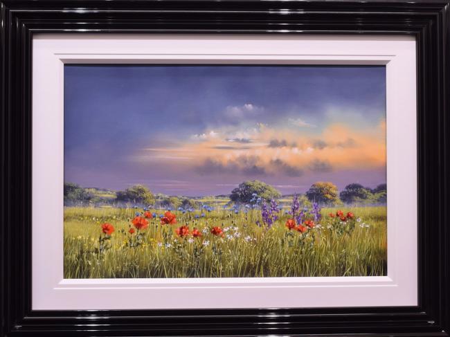 Wildflower Walk by Allan Morgan