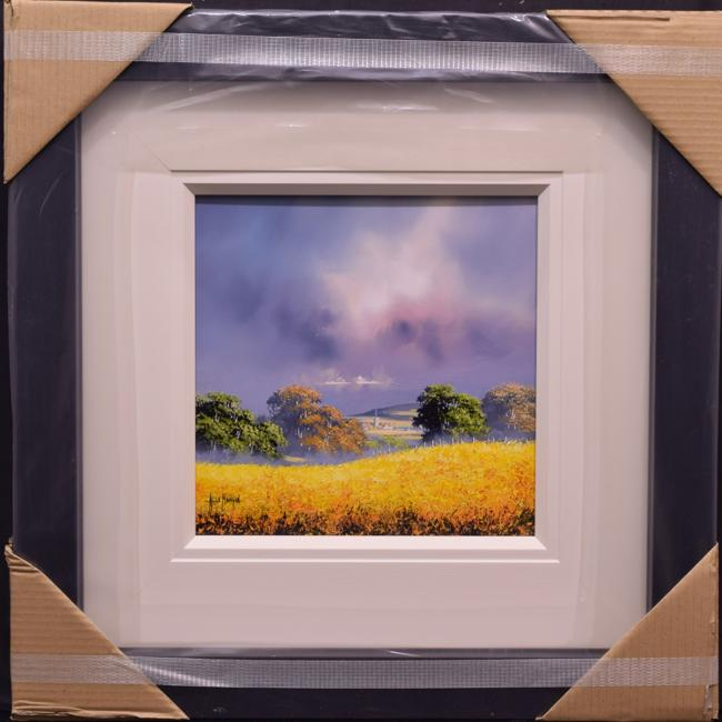 Yellow Field (12x12) by Allan Morgan