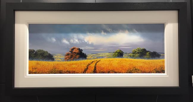 Yellow Meadow by Allan Morgan