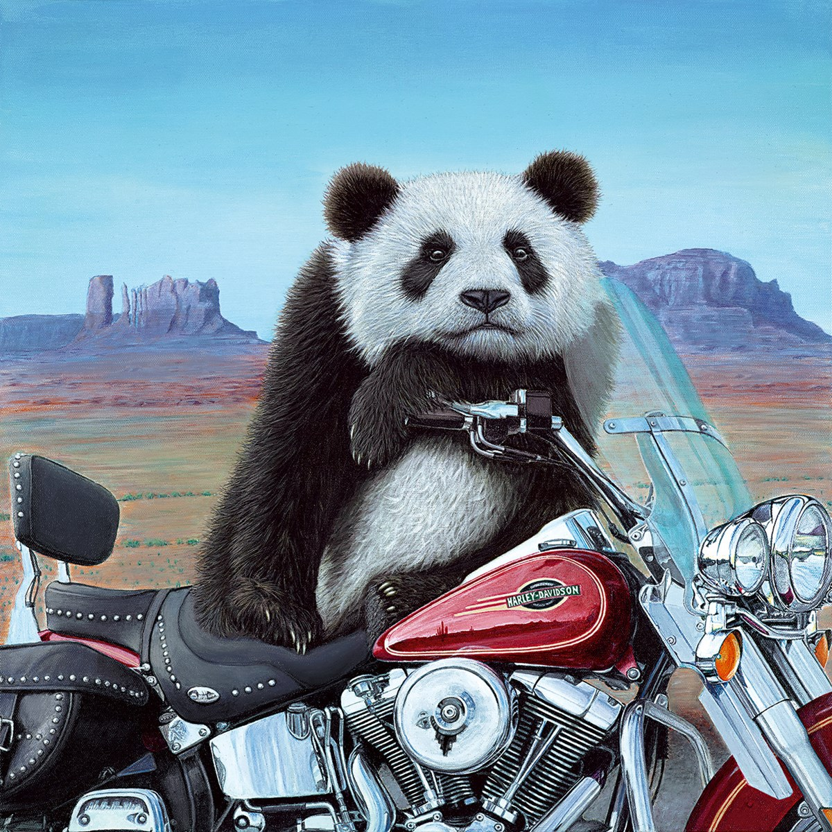 Born to be Wild by Steve Tandy