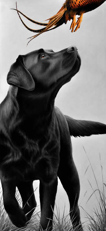 Cock-Up by Nigel Hemming