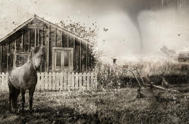 Dorothy's Dream by Mark Davies