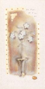 fleur-i-1922