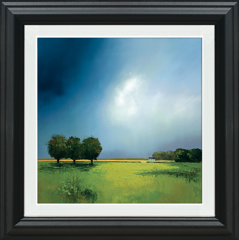 Green Fields of Home by Barry Hilton
