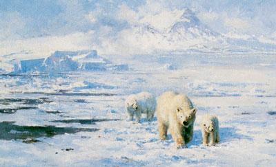 Ice Wilderness by David Shepherd