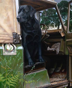 In The Driving Seat & Remarque of your Dog by Nigel Hemming