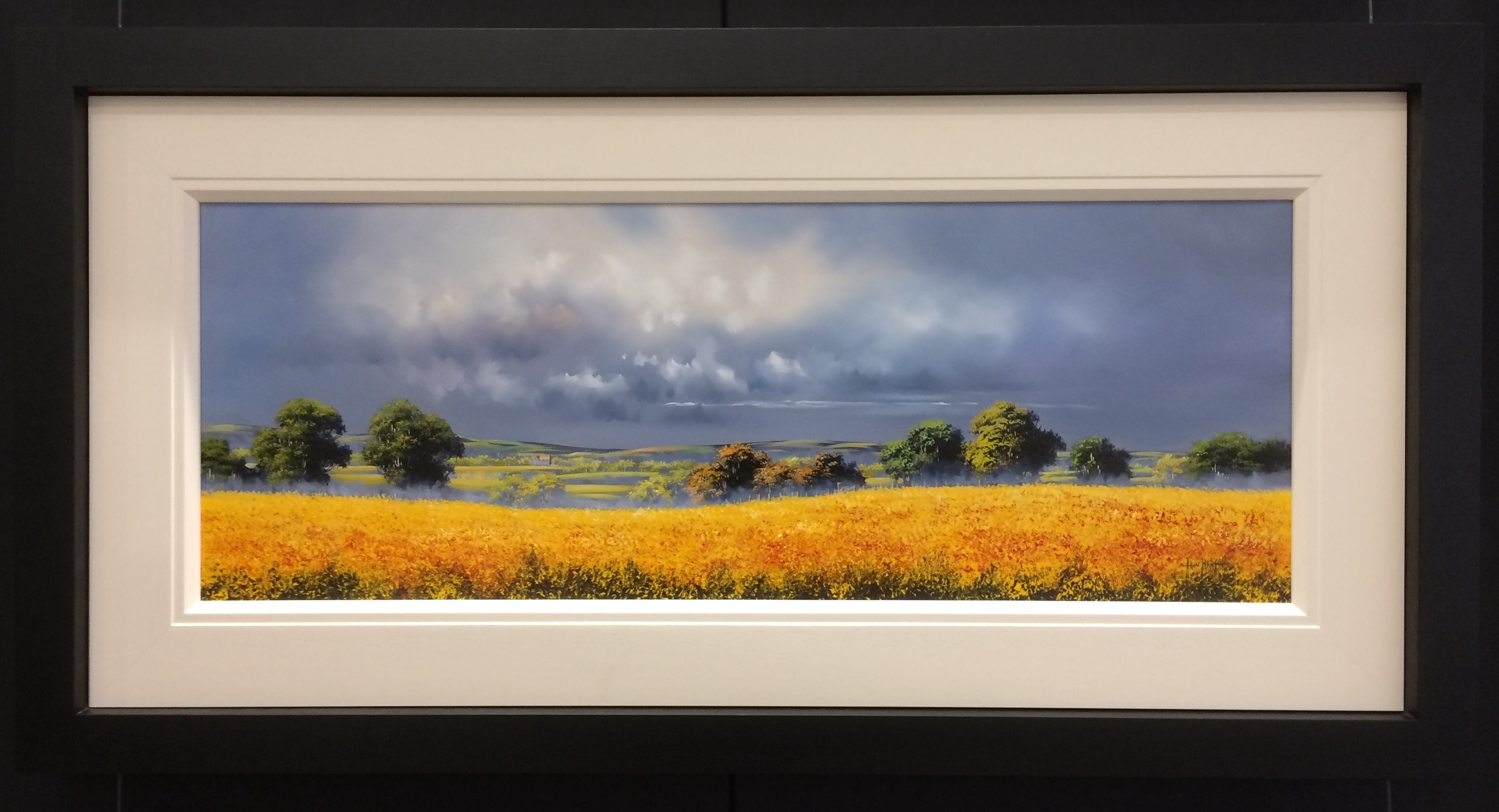 Landscape Yellow 40 x 15 by Allan Morgan