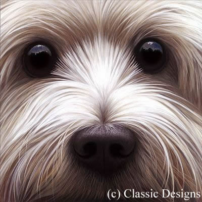 Larger Than Life - Westie by Nigel Hemming