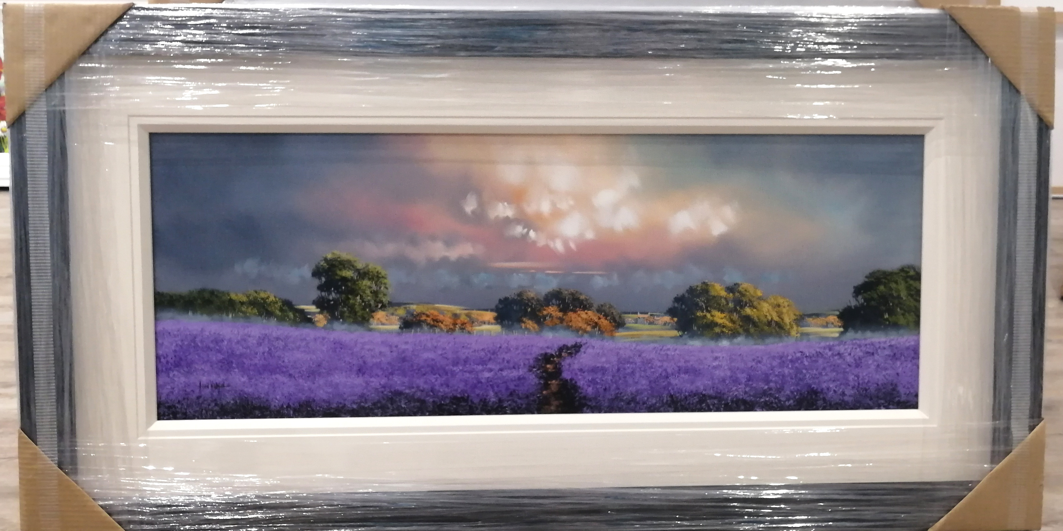 Purple Field (15x40) by Allan Morgan