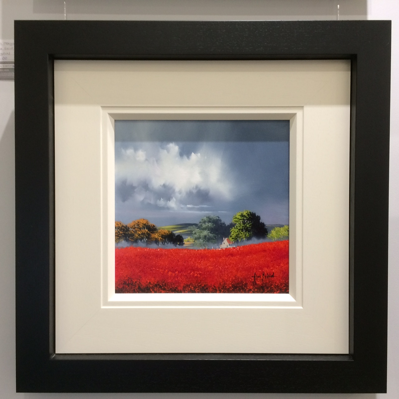 Red Field II (12x12) by Allan Morgan