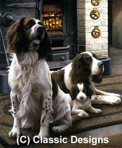 Spring Range - Springer Spaniels by Nigel Hemming