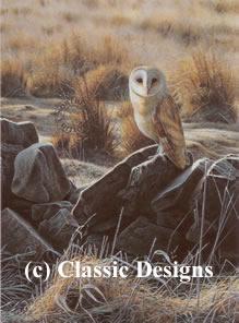 the-hunter-barn-owl-6307