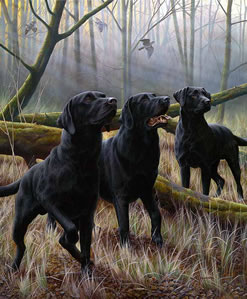 Tree Fellas & Remarque of your Dog by Nigel Hemming