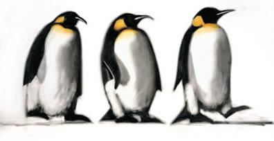 We Three Kings - Penguins by Paul Powis