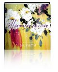 Illumination (LE book with prints)