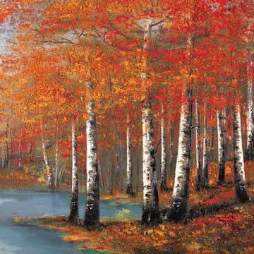autumn-adventure-14478