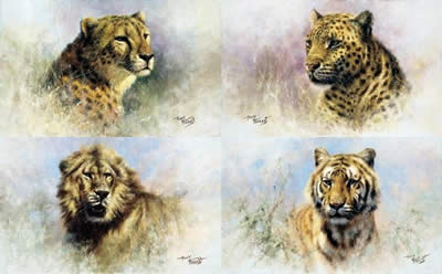 big-cats-portfolio-set-of-4-2106