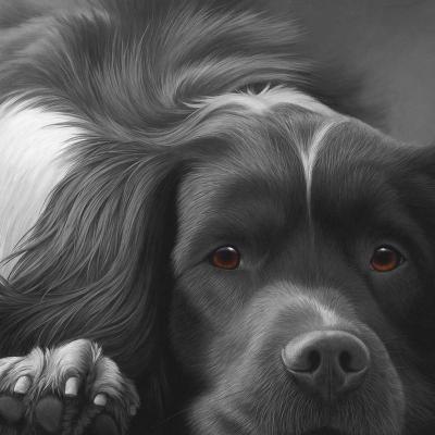 Dog Tired English Springer