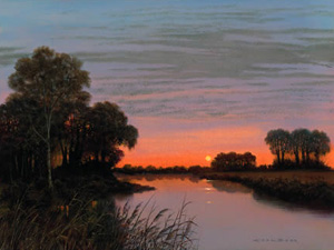 evening-gold-3777