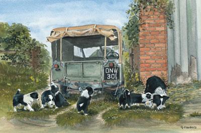 farmyard-frolics-landrover-2112