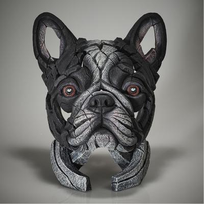 French Bulldog - Pied