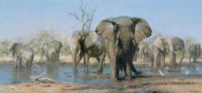 Happy Time - Elephants