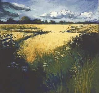 In Golden fields