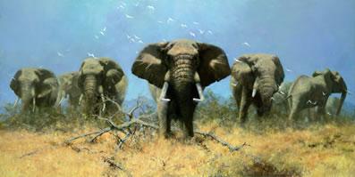 Just Elephants (75th Anniversary Print)