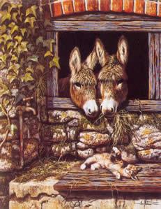 kitten-capers-donkeys-4287