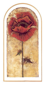 parading-poppy-2776