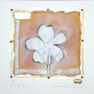 petit-fleur-4-1868