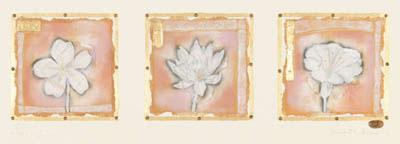 petit-fleur-456-landscape-1869