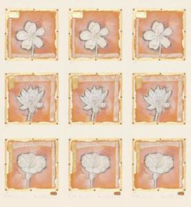 petit-fleur-9-in-1-picture-1860