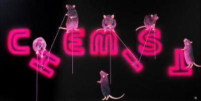 Rats Fixing The Chemist
