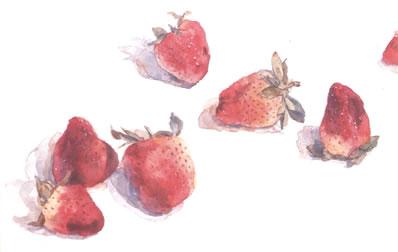 strawberries-2643